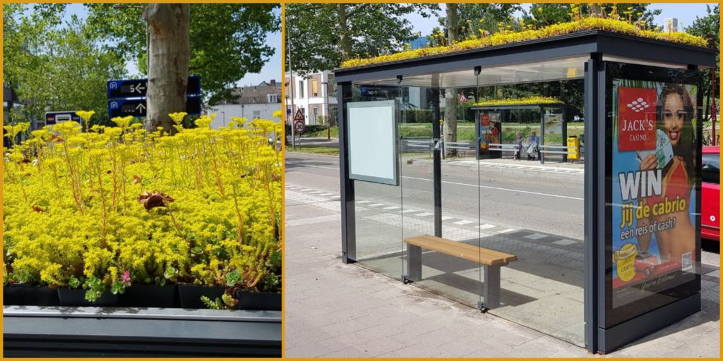 This Dutch City Improved Its Bus Stops By Turning Them ...